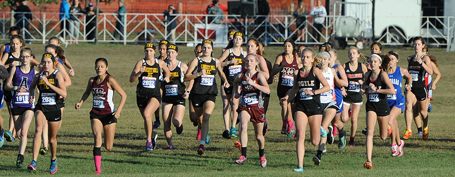 Cross Country State Tournament