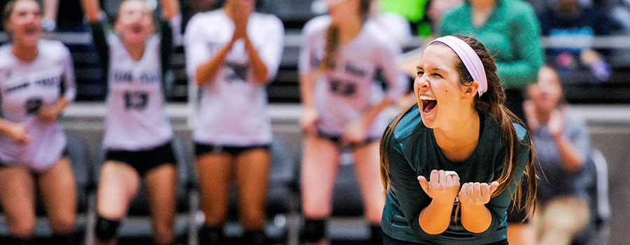 Volleyball State Tournament
